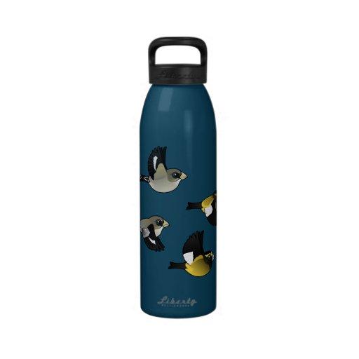 Evening Grosbeaks in Flight Drinking Bottle