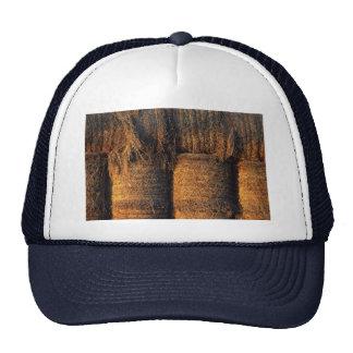 Evening light trucker hat