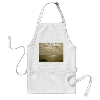 EVENING LIGHT WITH CLOUDY SKY AT THE OCEAN ADULT APRON