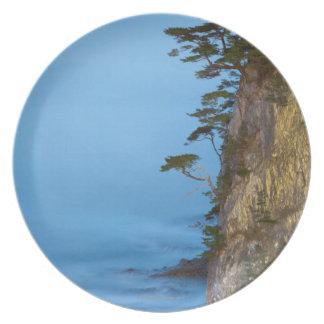 Evening on the Pacific Ocean. Rikuchu Kaigen Plate