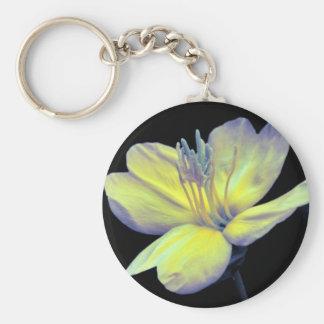 Evening Primrose Keychains