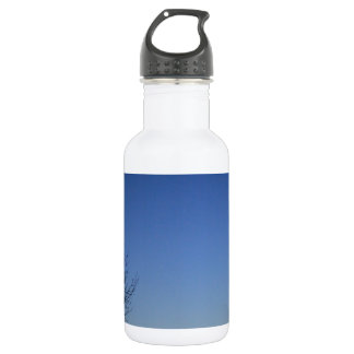 EVENING SKY STAINLESS STEEL WATER BOTTLE
