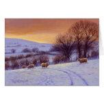 Evening Snow II by Donna Crawshaw Greeting Card