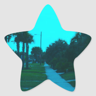 Evening Stroll at Isle of Palms Star Sticker