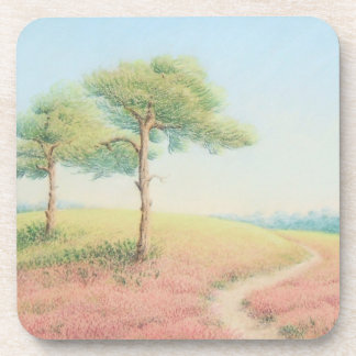 Evening Sun, New Forest Pine Trees Coasters