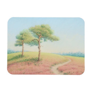 Evening Sun, New Forest Pine Trees Photo Magnet