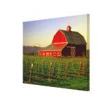 Evening sun on a barn in Washington's Skagit Gallery Wrap Canvas