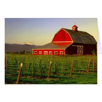 Evening sun on a barn in Washington's Skagit Cards