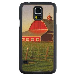 Evening sun on a barn in Washington's Skagit Carved Maple Galaxy S5 Slim Case