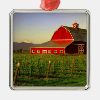 Evening sun on a barn in Washington's Skagit Metal Ornament