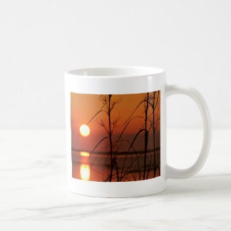 Evening sun reflection coffee mugs