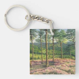 Evening Sun, Surrey Hills Pines Acrylic Key Ring