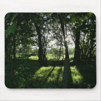 Evening Sun through Trees Llangollen Canal Mouse Pad
