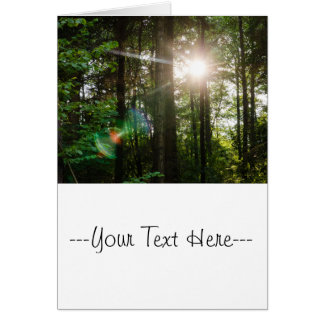 Evening Sunlight In A Forest Landscape Card