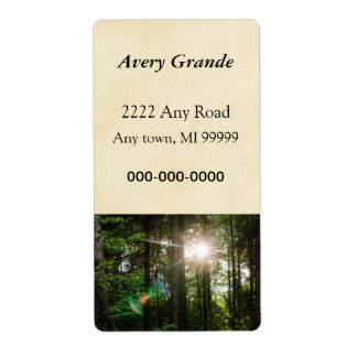 Evening Sunlight In A Forest Landscape Label