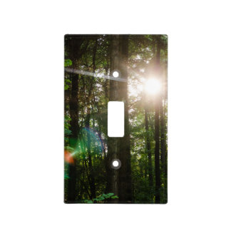 Evening Sunlight In A Forest Landscape Light Switch Cover