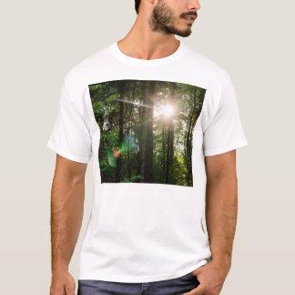 Evening Sunlight In A Forest Landscape T-Shirt