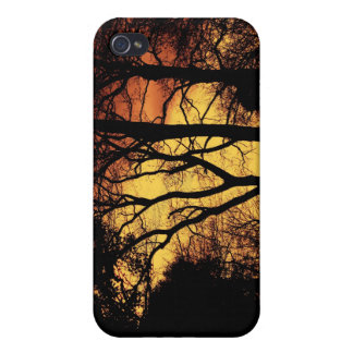 Evening Sunset Tree 2 Cover For iPhone 4