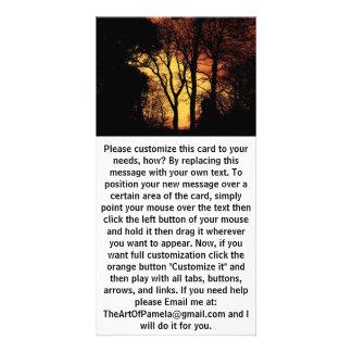 Evening Sunset Tree 2 Photo Greeting Card