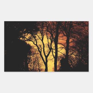 Evening Sunset Tree 2 Rectangular Sticker