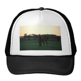 Evening with Grace Trucker Hat