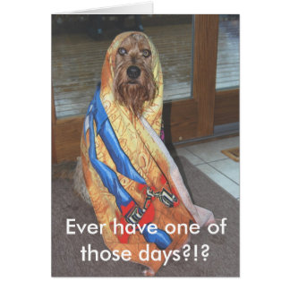 Ever Have One Of Those Days?!? Greeting Cards