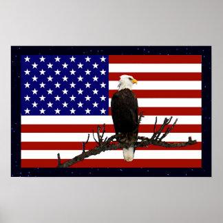 Ever Vigilant Bald Eagle Poster