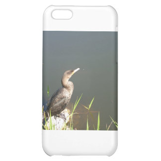 Everglades - Bird Case For iPhone 5C