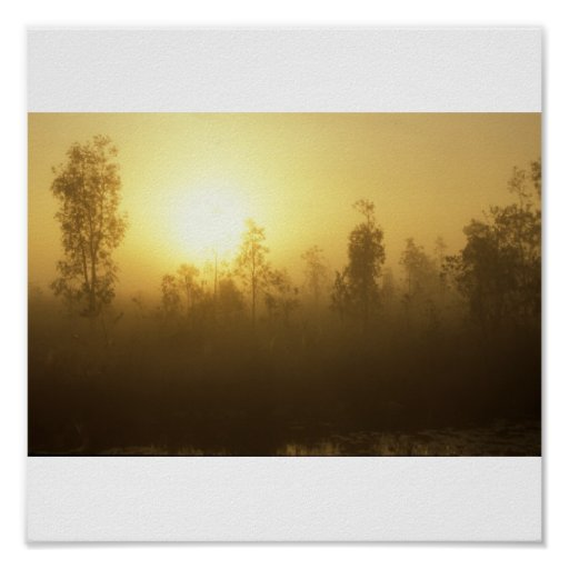 Everglades Dawn Print