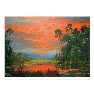 Everglades Fire Sky Postcards