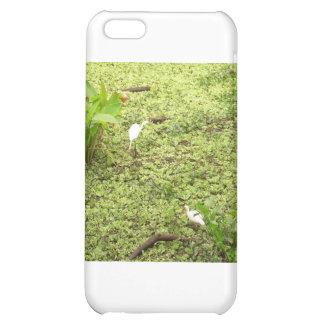 Everglades iPhone 5C Case