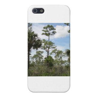 Everglades iPhone 5 Case