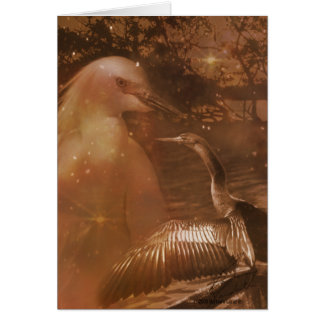 Everglades - National Park in Florida Card