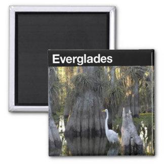 Everglades National Park Fridge Magnets