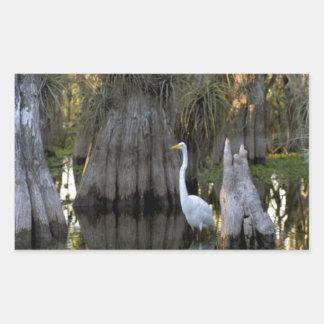 Everglades National Park Rectangular Sticker