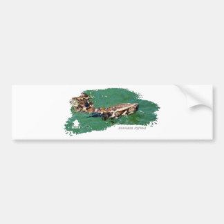 Everglades Python 01 Car Bumper Sticker
