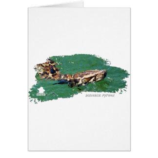 Everglades Python 01 Card
