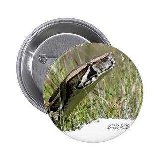 Everglades Pythons 02 2 Inch Round Button