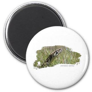 Everglades Pythons 02 2 Inch Round Magnet