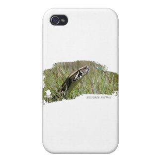 Everglades Pythons 02 iPhone 4 Cover