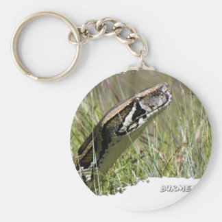 Everglades Pythons 02 Key Chains