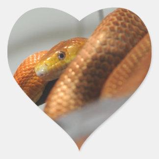 Everglades Rat Snake Heart Sticker
