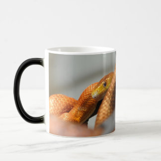 Everglades Rat Snake Magic Mug