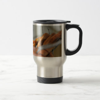 Everglades Rat Snake Travel Mug