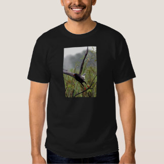 Everglades Snail Kite #1 shirt