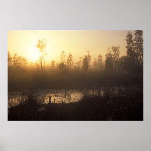 Everglades Sunrise Print