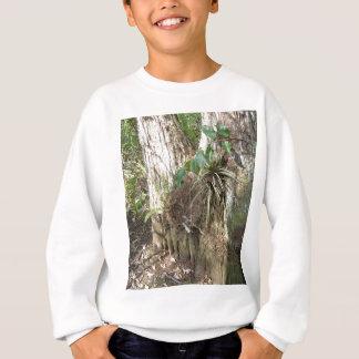 Everglades - swamp - marsh sweatshirt