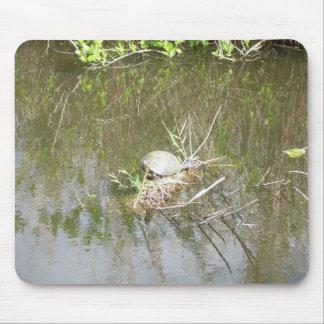 Everglades - tortoise mouse pad