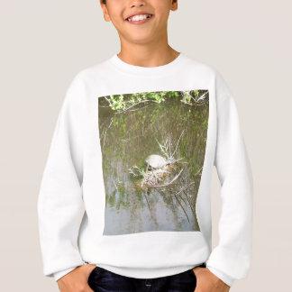 Everglades - tortoise sweatshirt