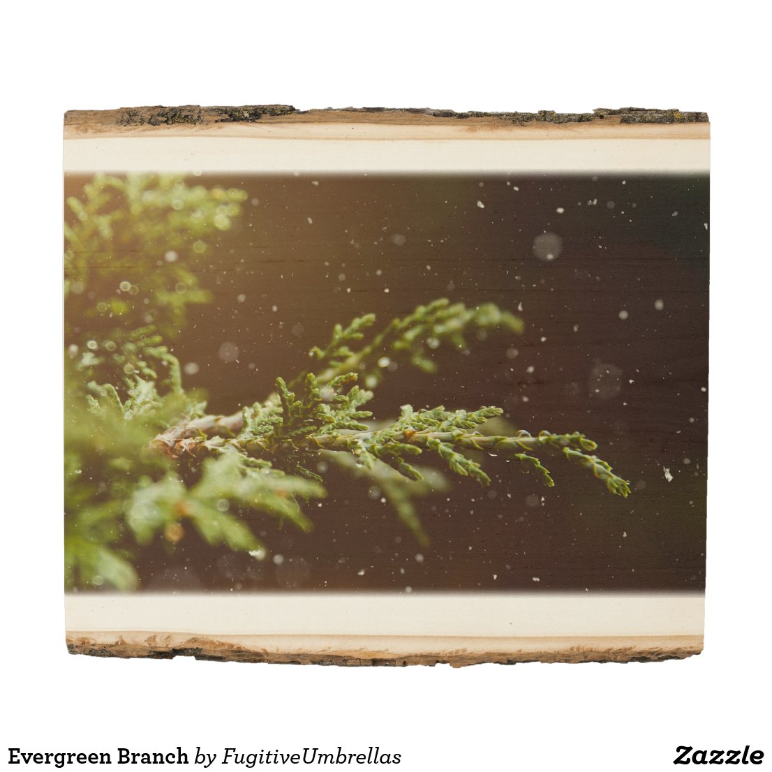 Evergreen Branch Wood Panel